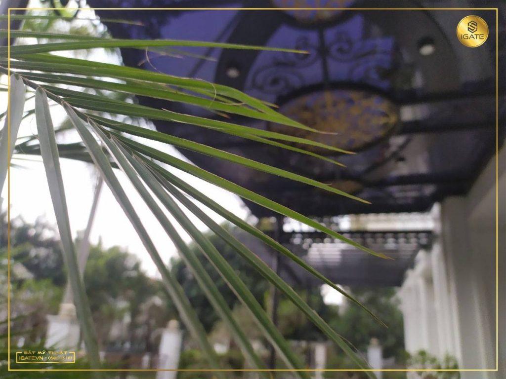mái kính sân vườn